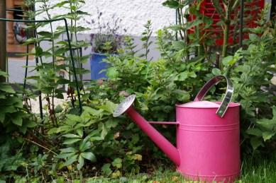 Giesskanne im Garten (Bildassistent: Lebhaft)