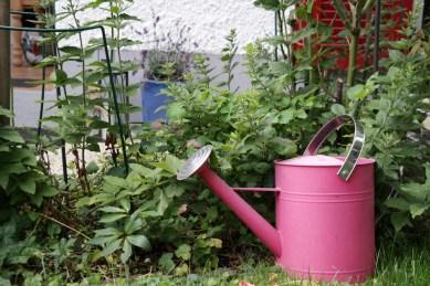 Giesskanne im Garten (Bildassistent: Porträt)