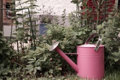 Giesskanne im Garten (Bildassistent: Retro)