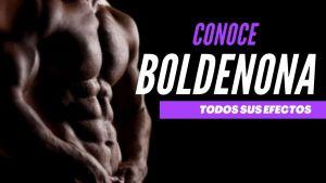 Todos los Efectos que genera la Boldenona