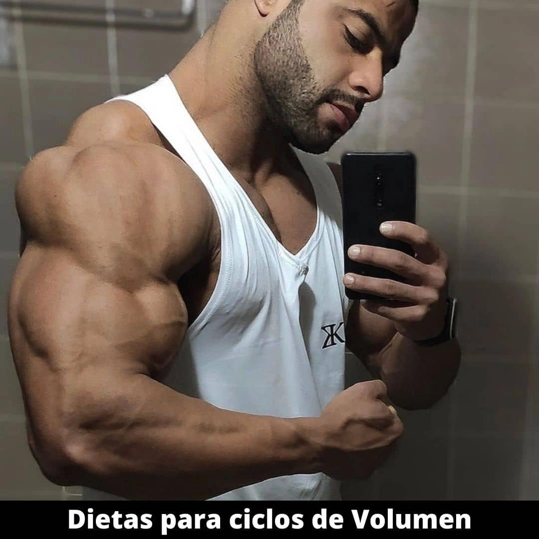 Dietas para ciclos de Volumen