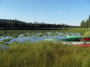 The canoes parked on the shore of loon lake. Canoe and swim in this high mountain lake during your wagon train vacation.