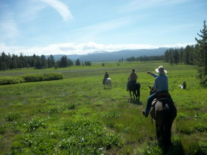 A ride through Squirrel Meadows on your very own wagon train vacation.
