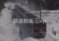 列車番号031 「あけぼの、583系、日本海、津軽平野 秋・冬」