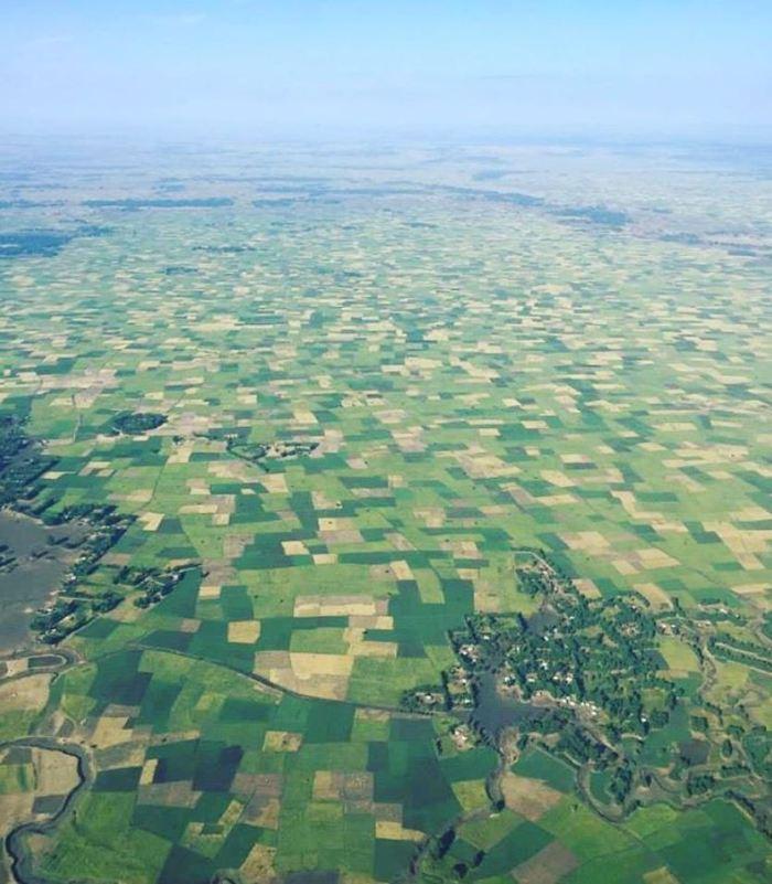 Gojjam teff farm from air