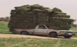 """More Love for This Post Please! """"Haulin' Hay For Fun & Profit"""" Still in 'Southern Mode!'"""
