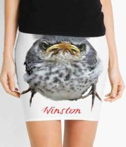 Winston Pencil Skirts