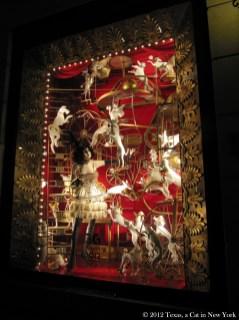 In the window of Bergdorf Goodman