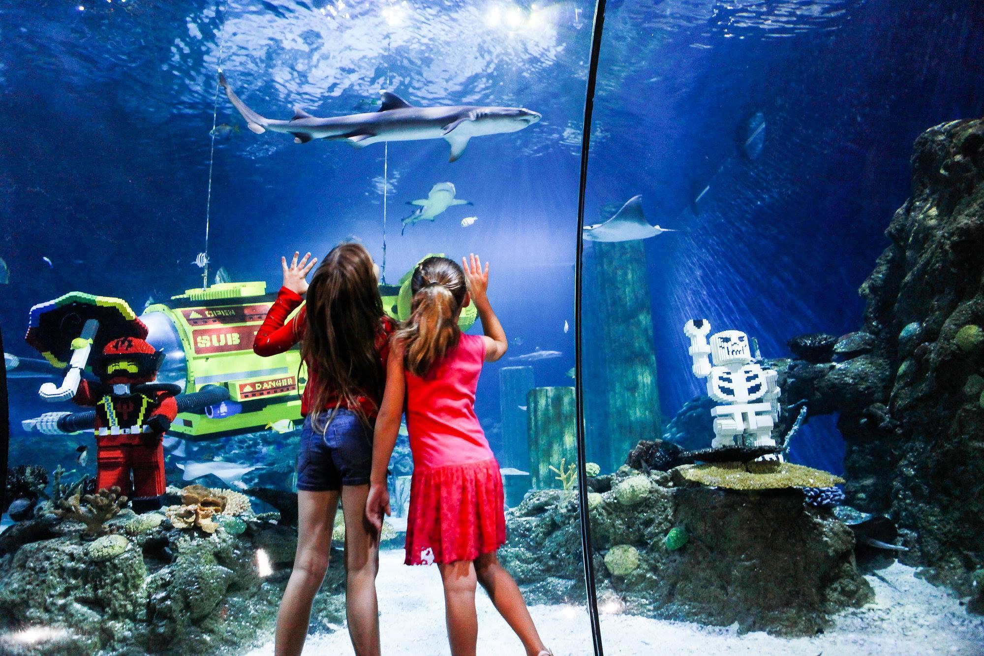 San Antonio Legoland Discovery Center Sea Life Aquarium