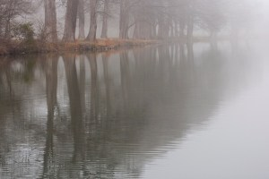 Picture of a foggy winter morning in the Texas Hill Country