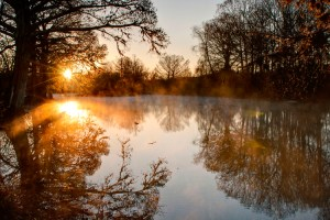 A picture of a Texas Hill Country sunrise on the Guadalupe river