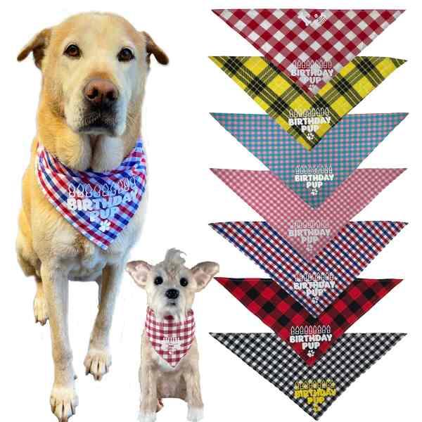 Texas Pet Co Dog Bandana Birthday Pup Model Dogs