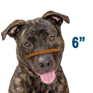 Chicken Jerky Bars Dog Treat Size 300x300