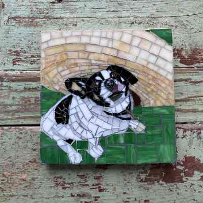 DeniseMosaics-Pet Portraits Dog Display Gallery 8x8 3