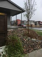 midtown hail 7