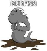 mudfish_web