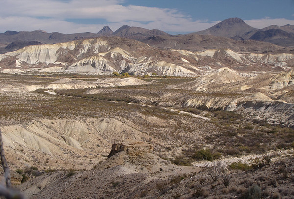 Big Bend in the northern Chihuahuan Desert