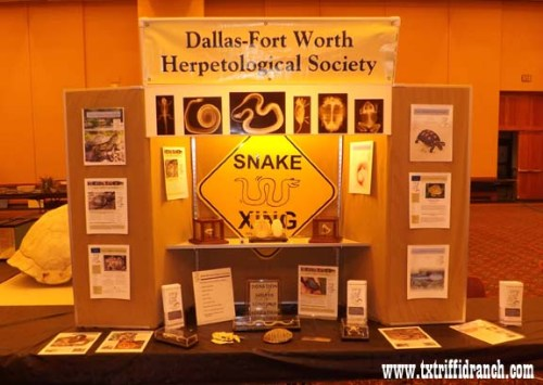 Dallas - Fort Worth Herpetological Society display