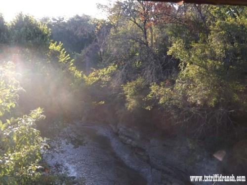 Creek at morning
