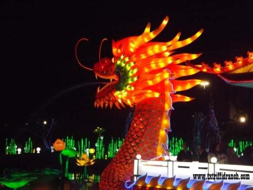 clf_dragonboat_1092014_2