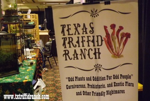 txfrightmare_2016_aftermath_1