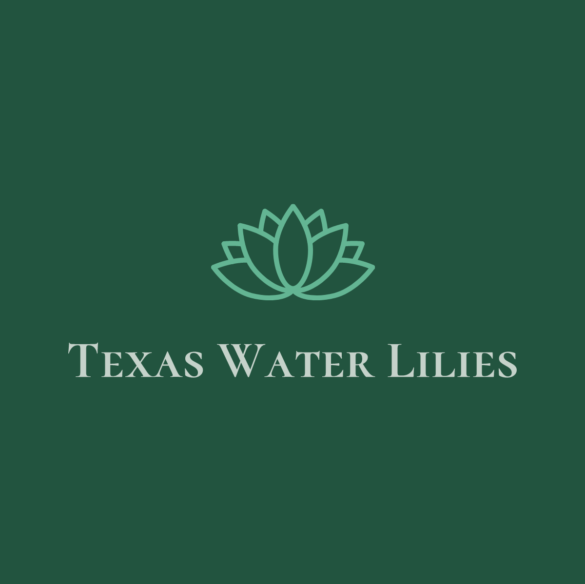Texas Water Lilies