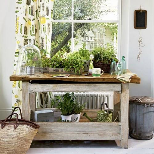Πώς να διακοσμήσετε την κουζίνα σας με βότανα11