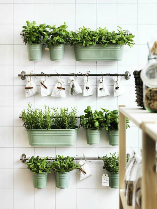 Πώς να διακοσμήσετε την κουζίνα σας με βότανα23