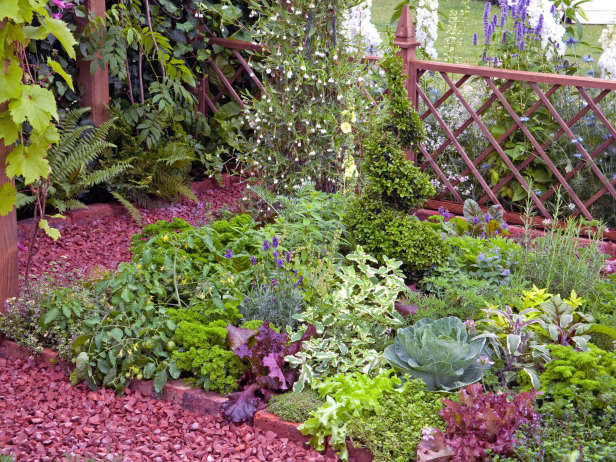 Είδη για φράχτες Κήπου16