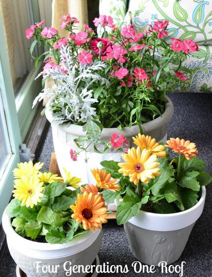 Δημιουργικές Κατασκευές Κήπου1