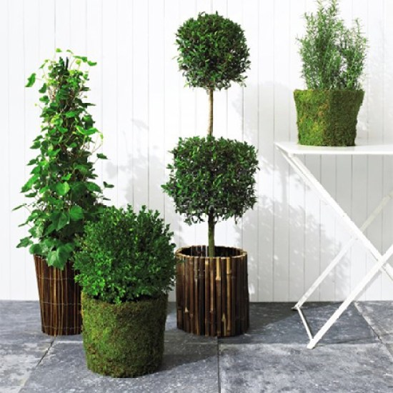 γλάστρες από κλαδιά και ξύλο δέντρου1
