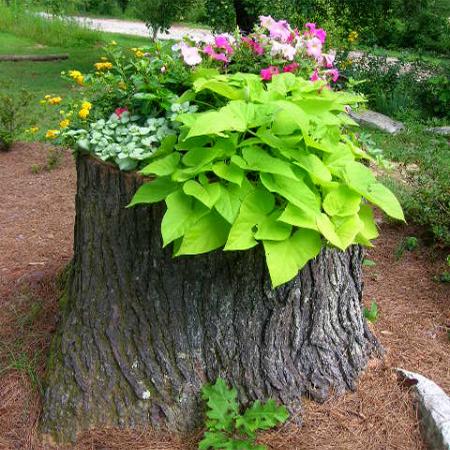 ιδέες με κορμούς δέντρου στον κήπο3