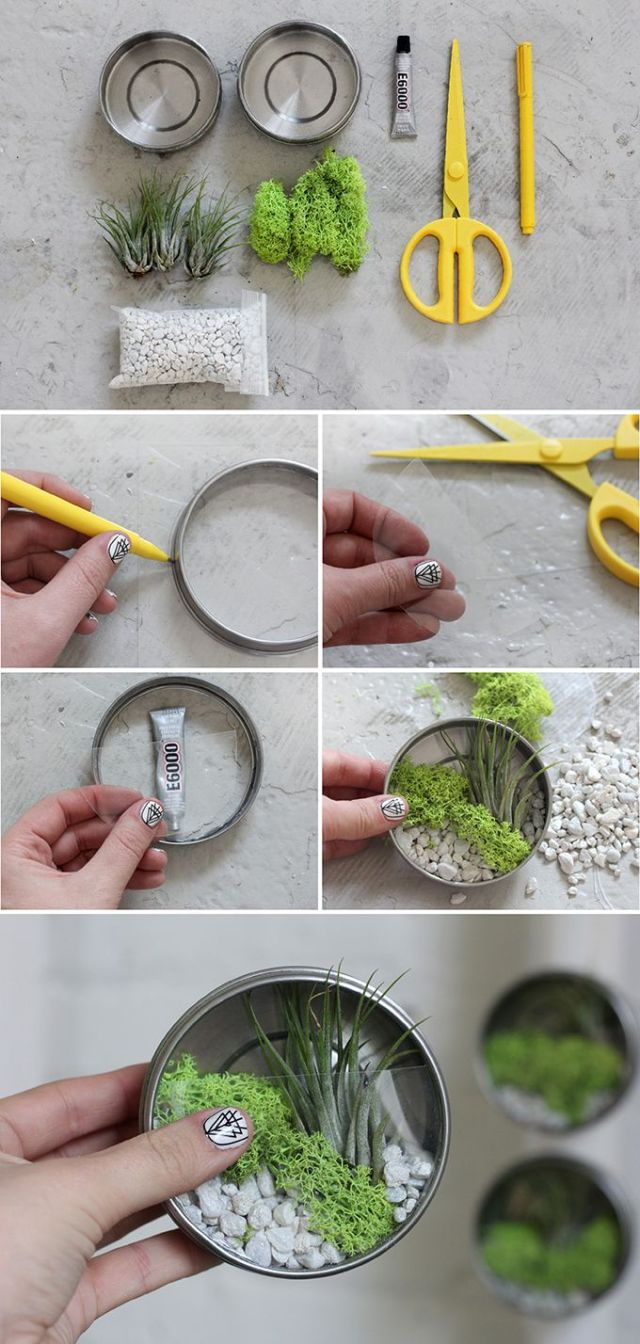 Ιδέες Εσωτερικής διακόσμησης με φυτά11