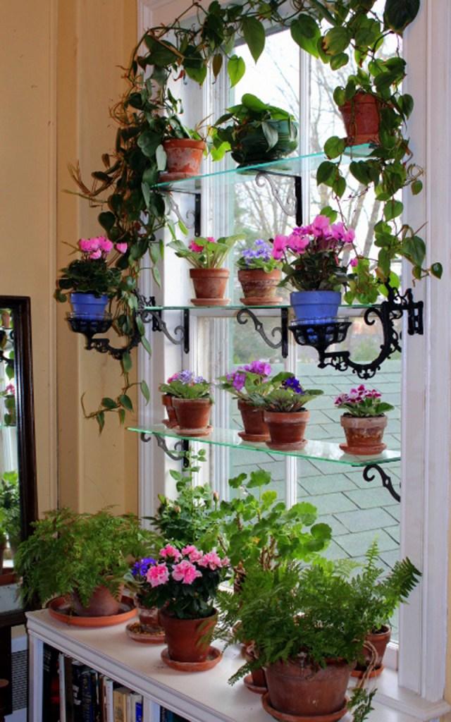 DIY Ιδέες Βότανο κήπων Παραθύρων για την κουζίνα σας13