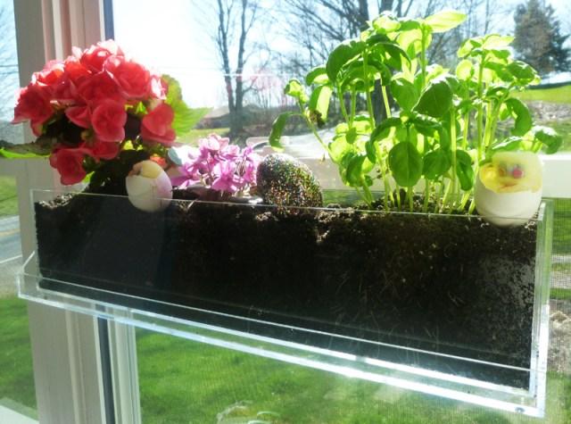 DIY Ιδέες Βότανο κήπων Παραθύρων για την κουζίνα σας7