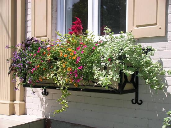 Ιδέες με ζαρτινιέρες λουλουδιών για τα παράθυρα σας13