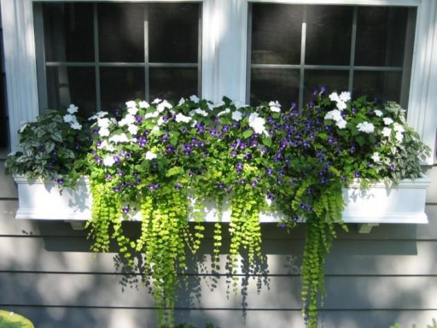 Ιδέες με ζαρτινιέρες λουλουδιών για τα παράθυρα σας14