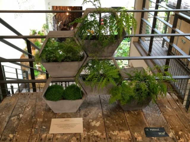 έξυπνες ιδέες κηπουρικής13