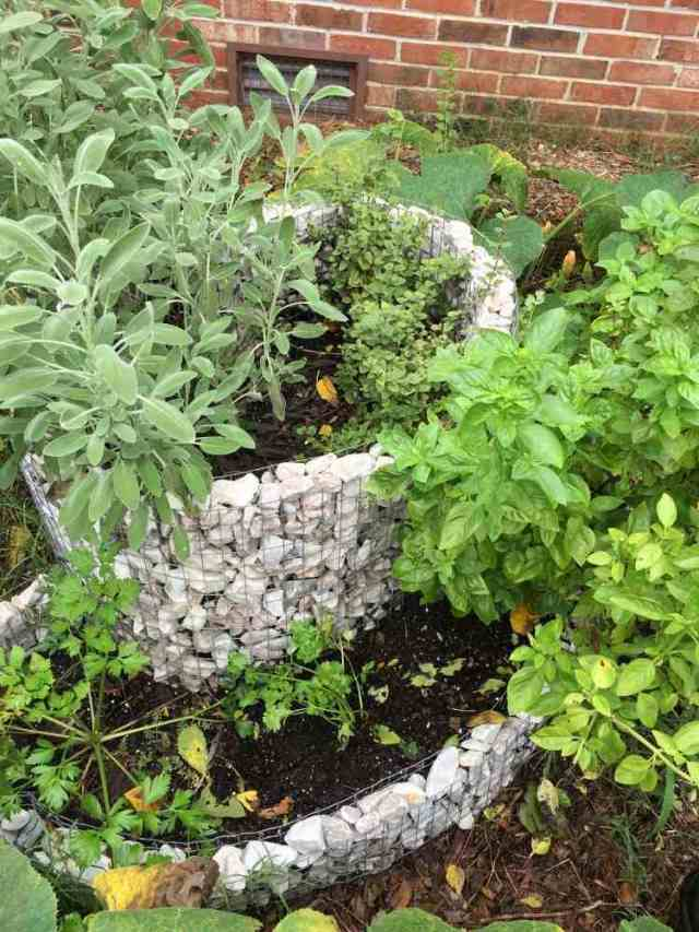 υπερυψωμένος κήπος από συρματοκιβώτια17