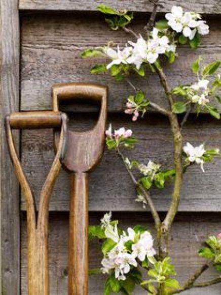 παλιά εργαλεία σε διακοσμητικά κήπου18