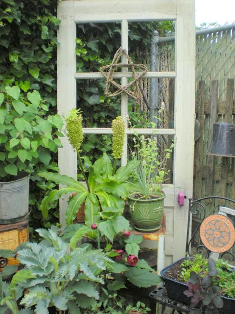 πόρτες και παράθυρα στον κήπο2
