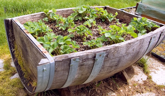 diy ιδέες για γλάστρες κήπου11