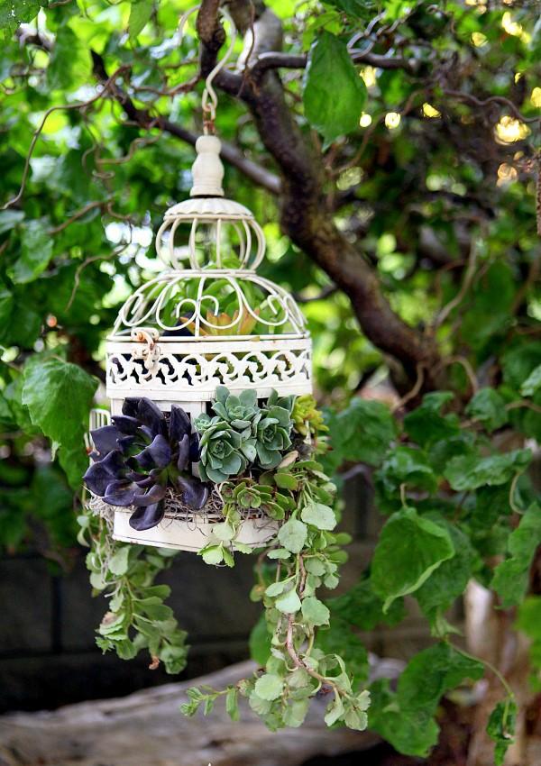 Κλουβιά πουλιών σαν γλάστρες6