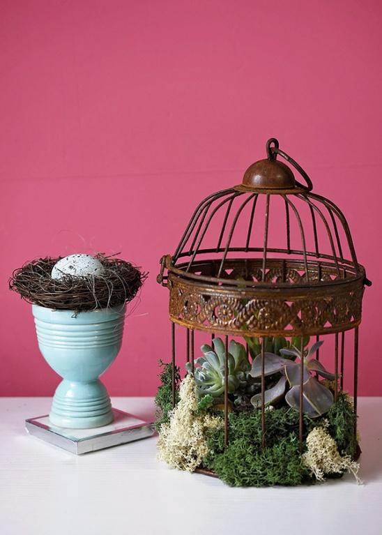 Κλουβιά πουλιών σαν γλάστρες8