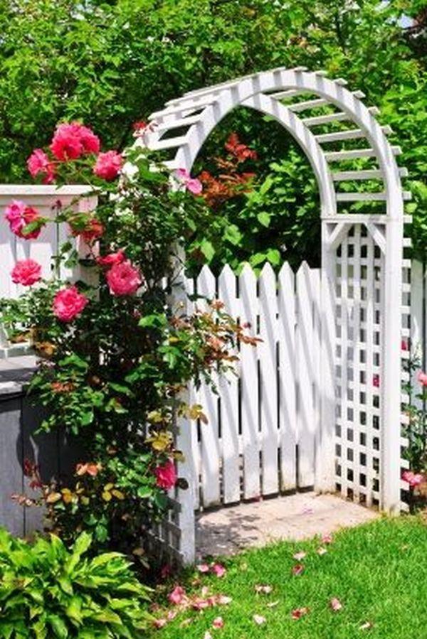 ιδέες από καμάρες κήπου12