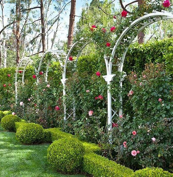 ιδέες από καμάρες κήπου2
