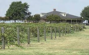 Munson Viticulture & Encology Center