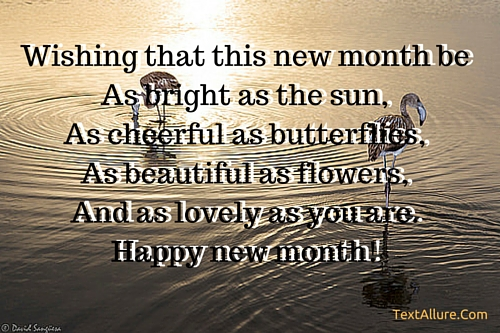 https://i1.wp.com/textallure.com/wp-content/uploads/2016/04/happy-new-month-sms-lovers.jpg