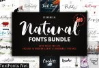 BF Natural Font Bundle 3750908