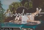 Anggeliana Font v.FH27